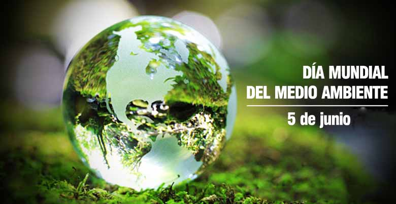 Día Mundial del Medio Ambiente. Filtrar agua de casa es una manera de protegernos contra la ingestión de metales pesados y sustancias como cloro o lejía de una manera sencilla. Filtros de agua para casa del Doctor Agua