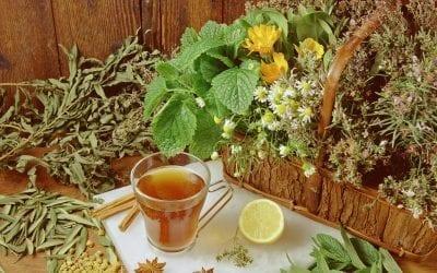 7 Infusiones y otros remedios con agua para aliviar la tos